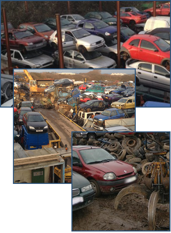 Scrap Yard with Old Vehicles